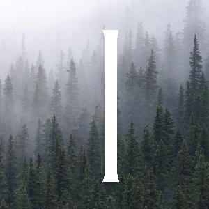 symbole viking